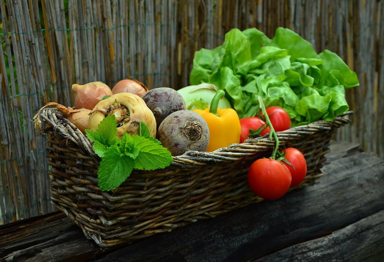 Informationen über Vitamine und Mineralien